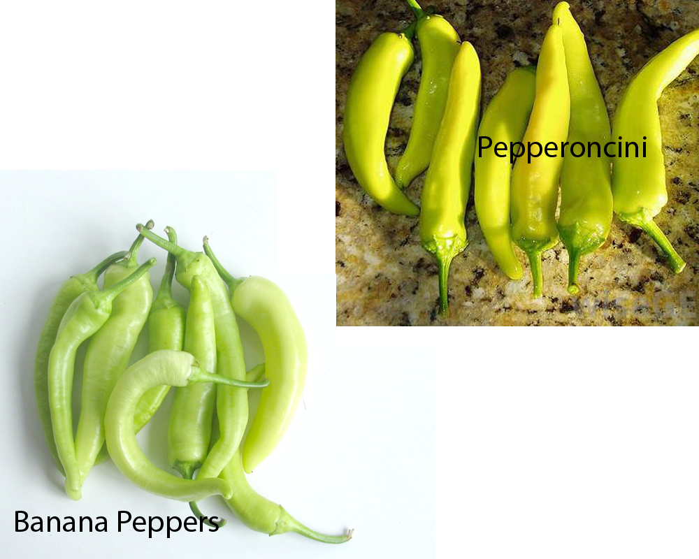 Banana Peppers vs Pepperoncini 5