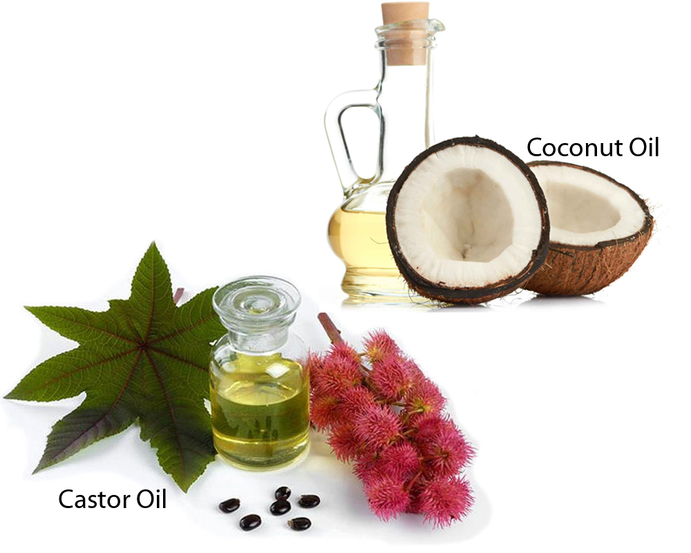 Castor Oil vs Coconut Oil 2