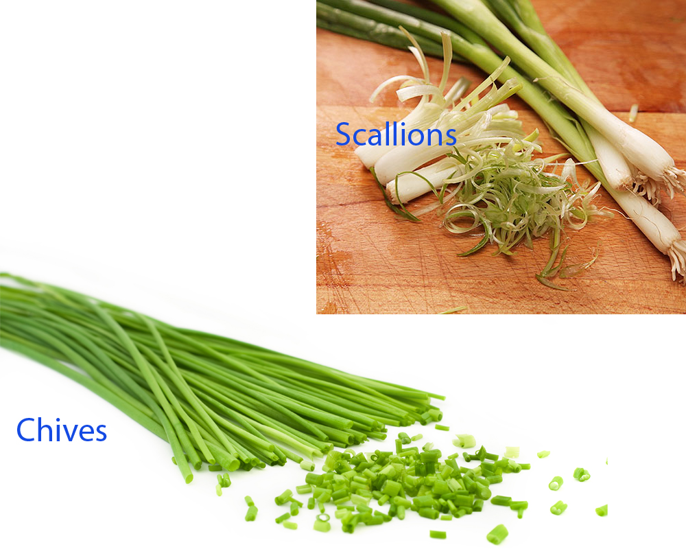 Chives vs Scallions 2