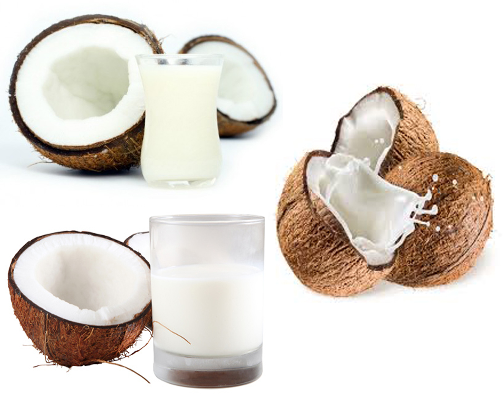 Coconut Cream vs Coconut Milk b
