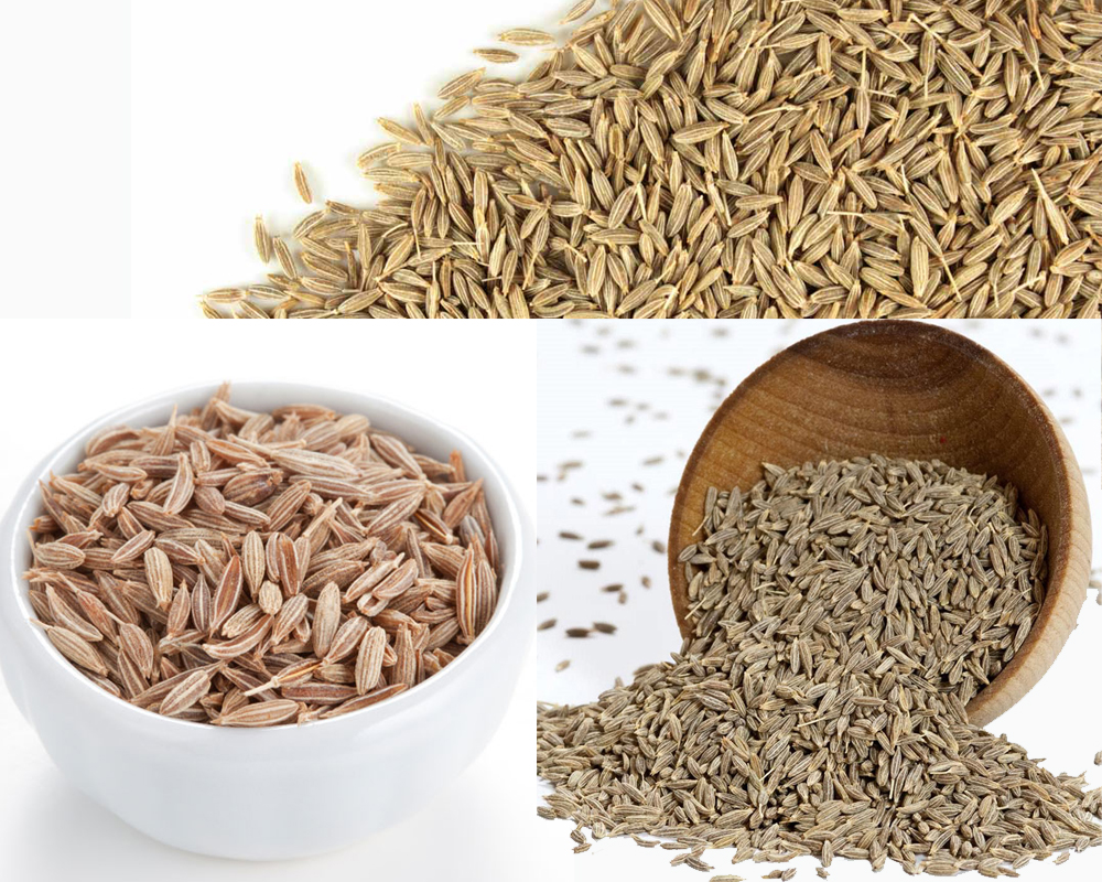 Cumin Seeds vs Ground Cumin a