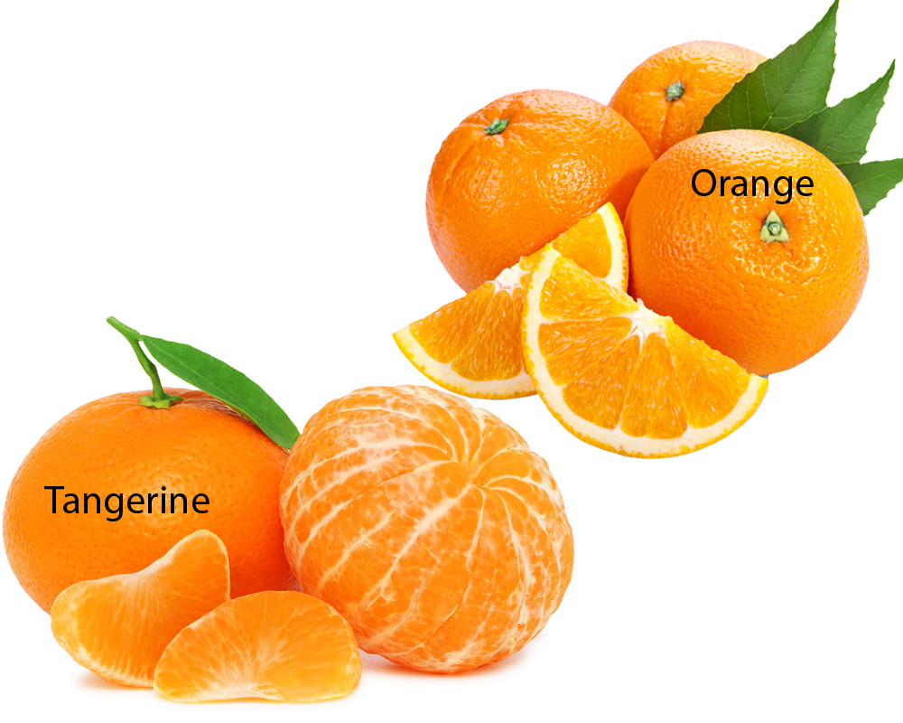 Tangerine vs Orange 1