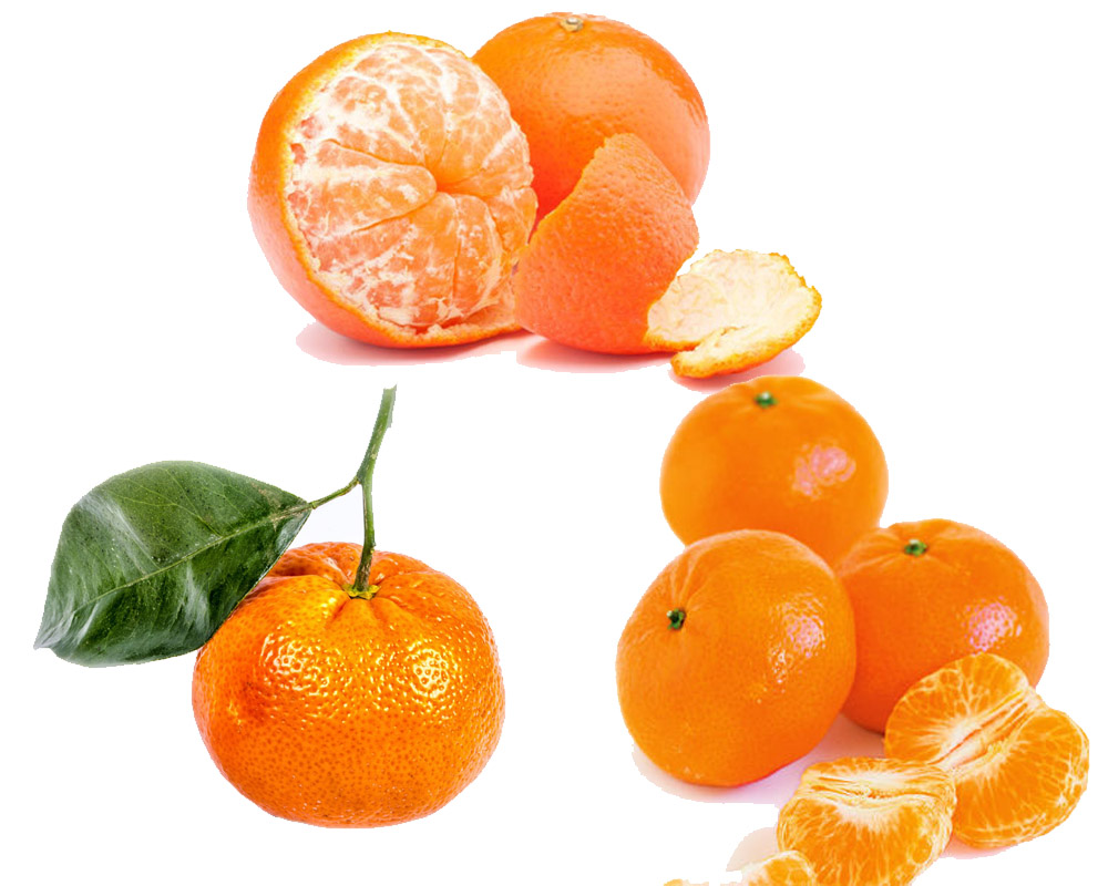 Tangerine vs Orange a