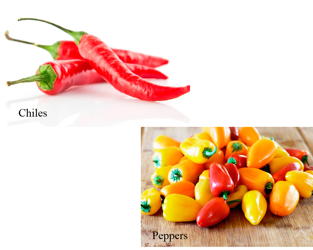 chiles-vs-peppers-2
