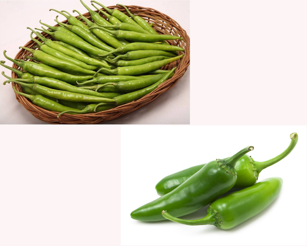 green-chiles-vs-jalapenos-1
