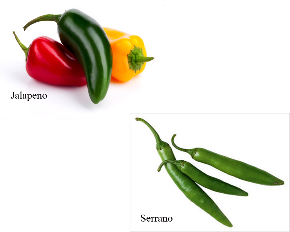 jalapeno-vs-serrano-2