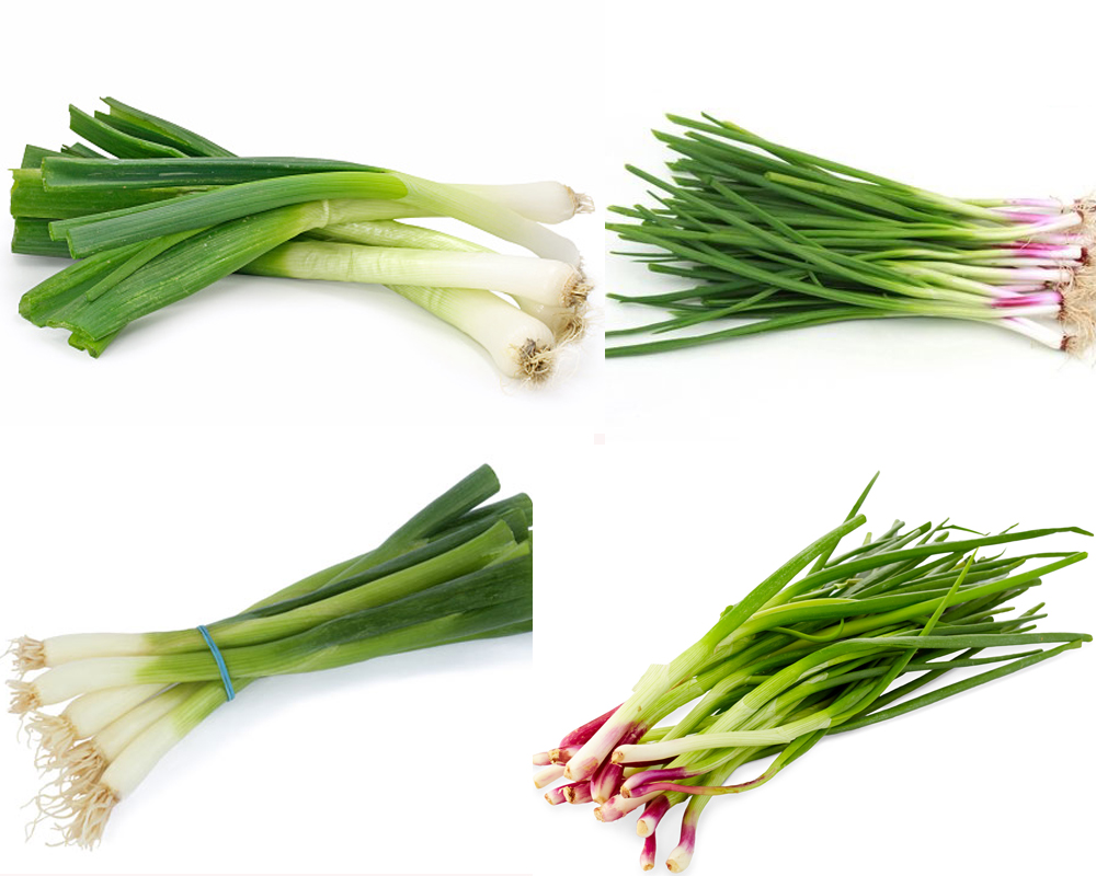 spring-onion-vs-green-onion-3