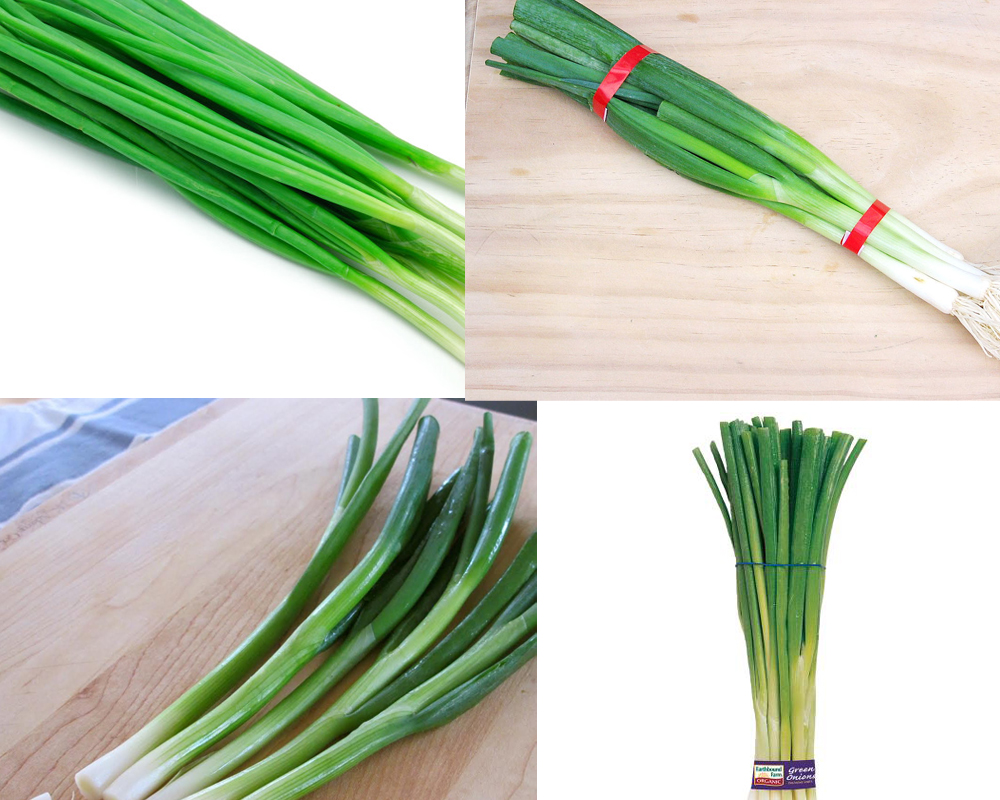 spring-onion-vs-green-onion-4