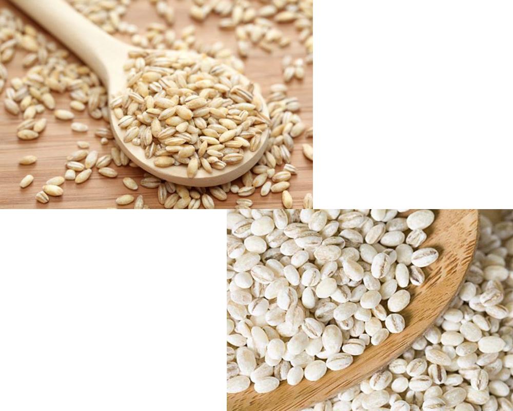 barley-vs-pearl-barley-1