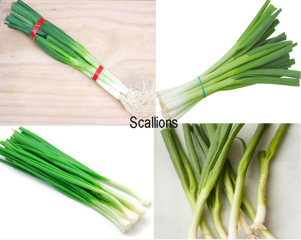 leeks-vs-scallions