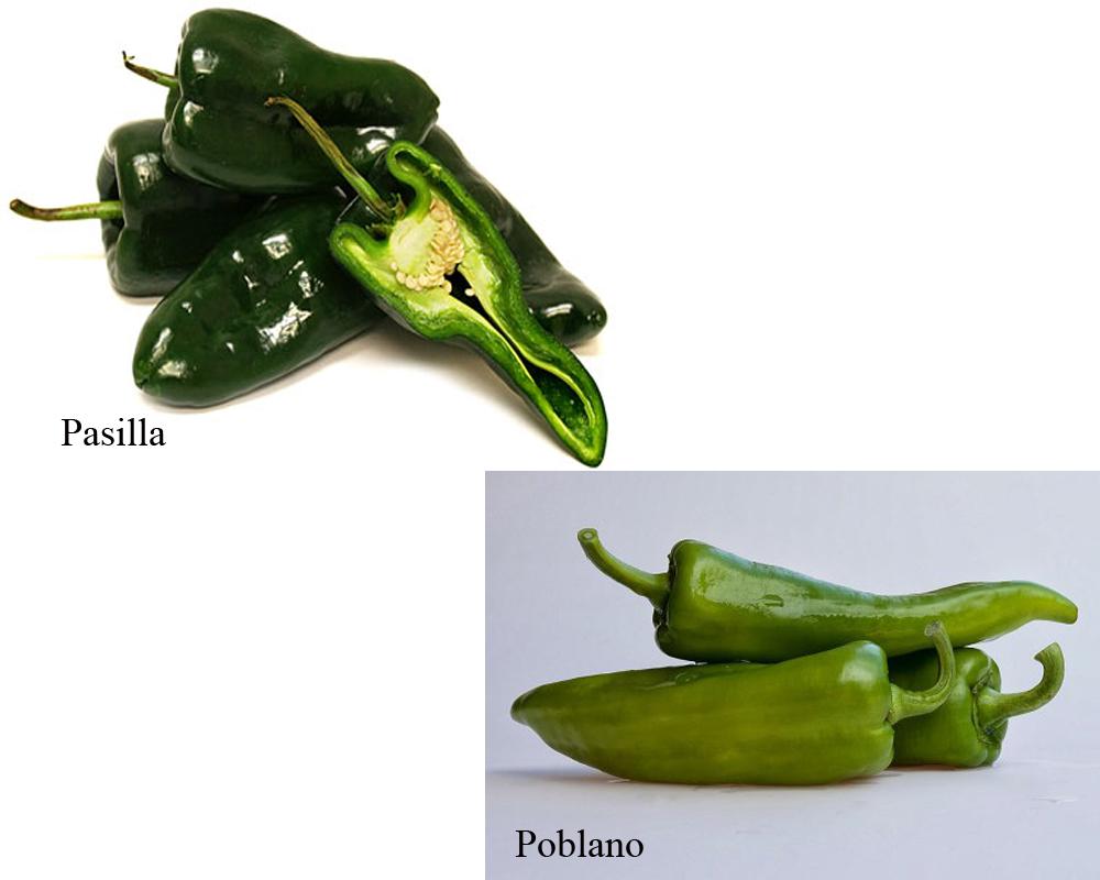 pasilla-vs-poblano-2
