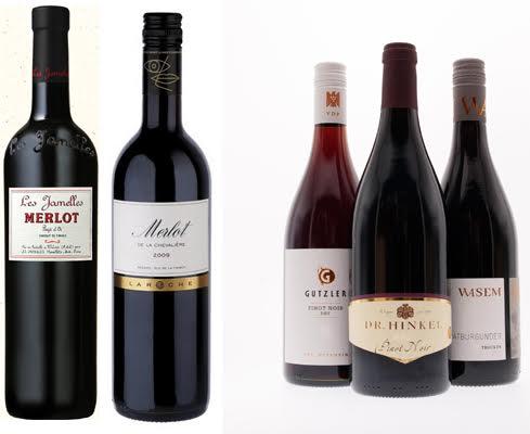 Merlot vs Pinot Noir