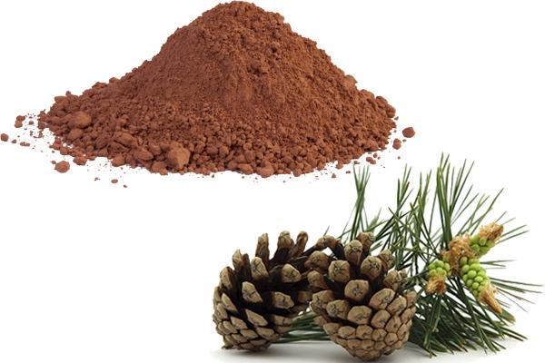 pine bark extract vs pycnogenol