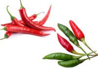 chili pepper vs cayenne pepper