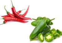 chili pepper vs jalapeno