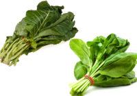 collard greens vs spinach