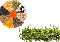 lentils vs split peas