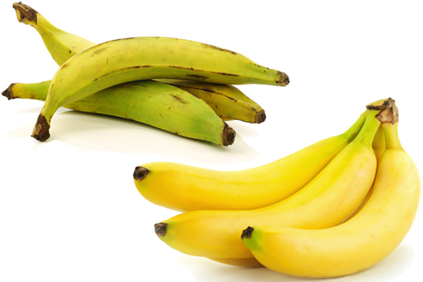 plantain vs banana