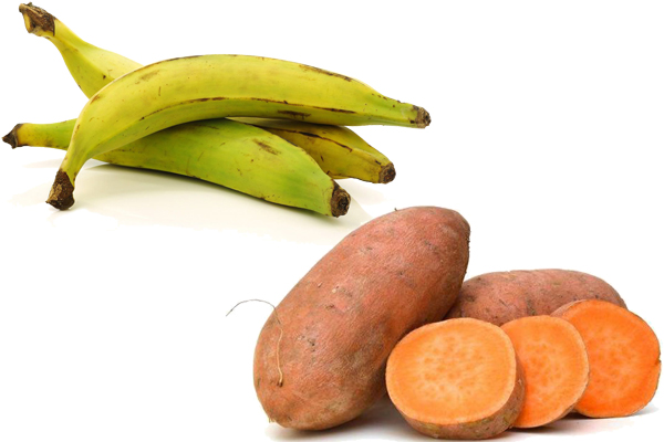 plantains vs sweet potatoes