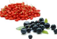 Goji vs Acai Berry 1