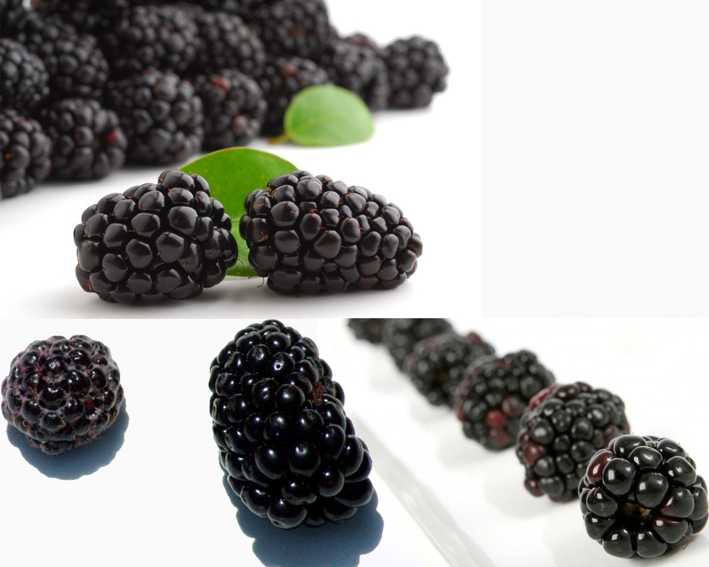 Black Raspberry vs Blackberry a