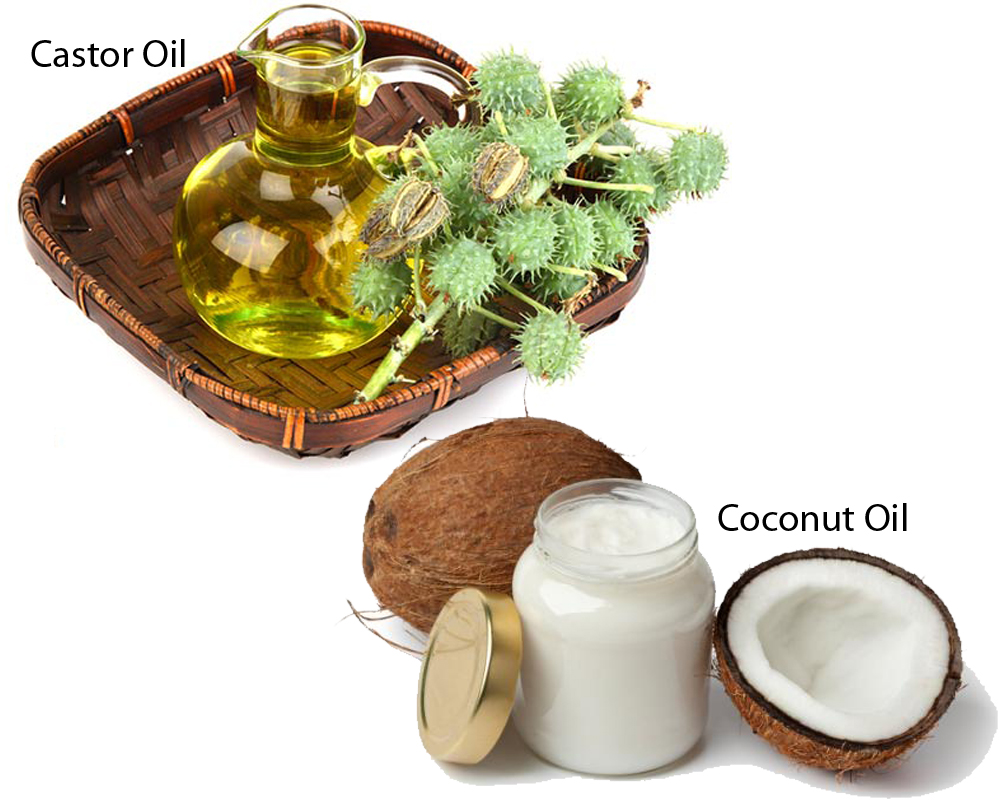Castor Oil vs Coconut Oil 1