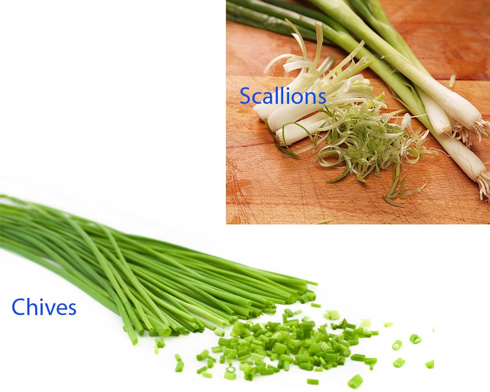 Chives vs Scallions 2