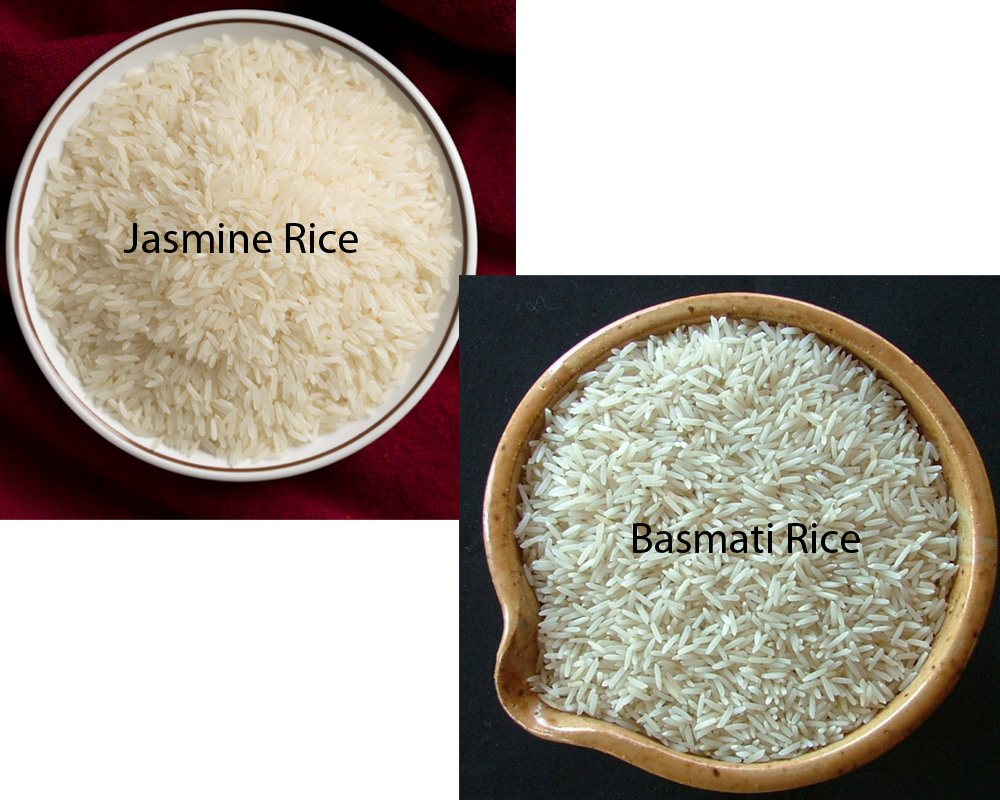 Jasmine vs Basmati Rice 1