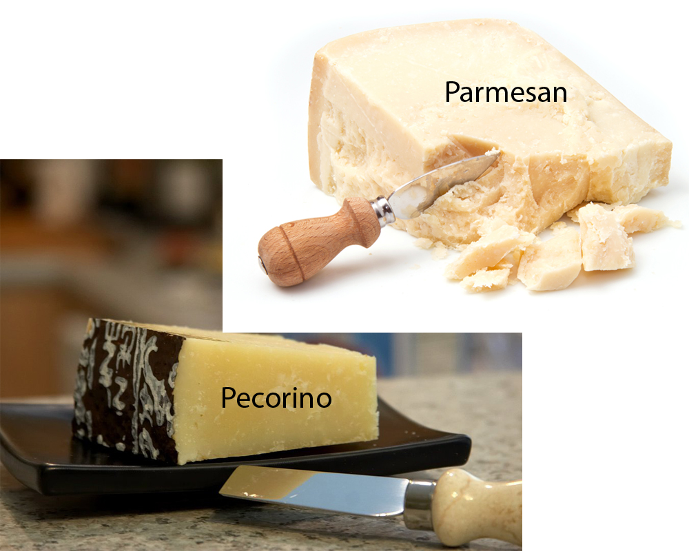 Pecorino vs Parmesan 2