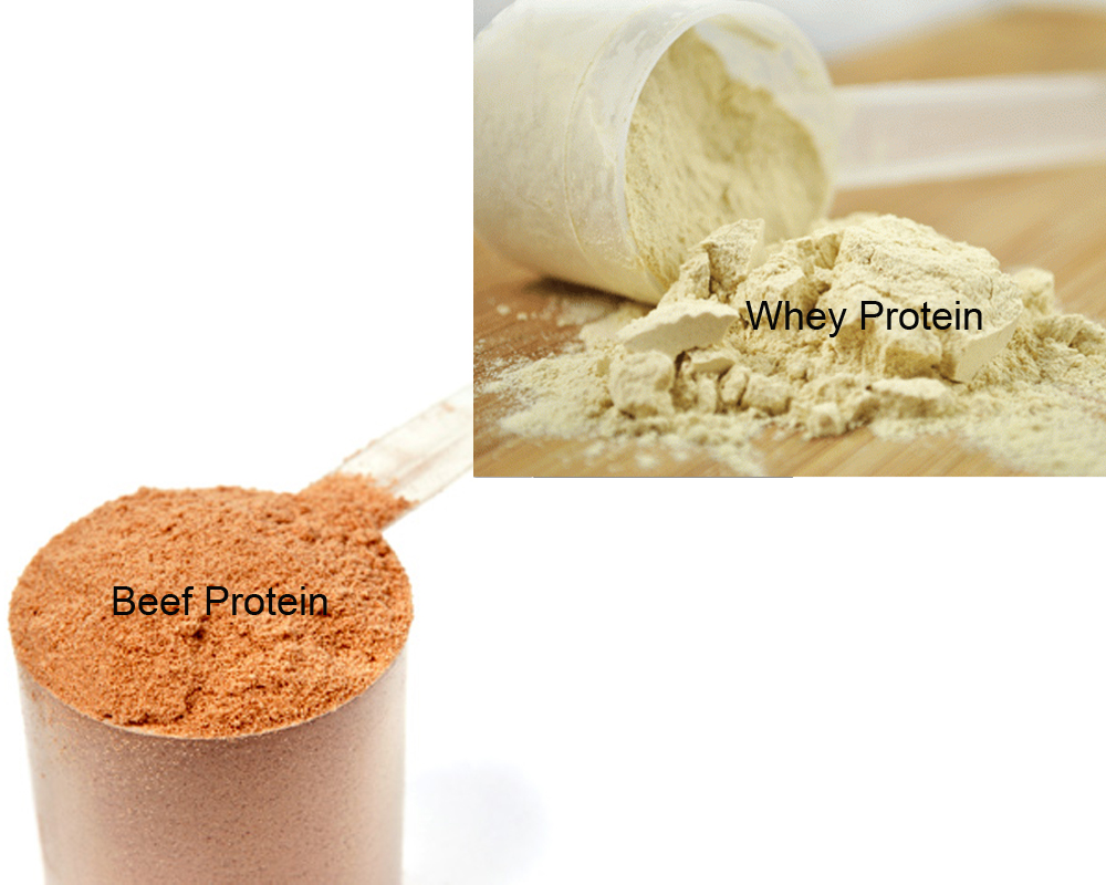 beef-protein-vs-whey-2