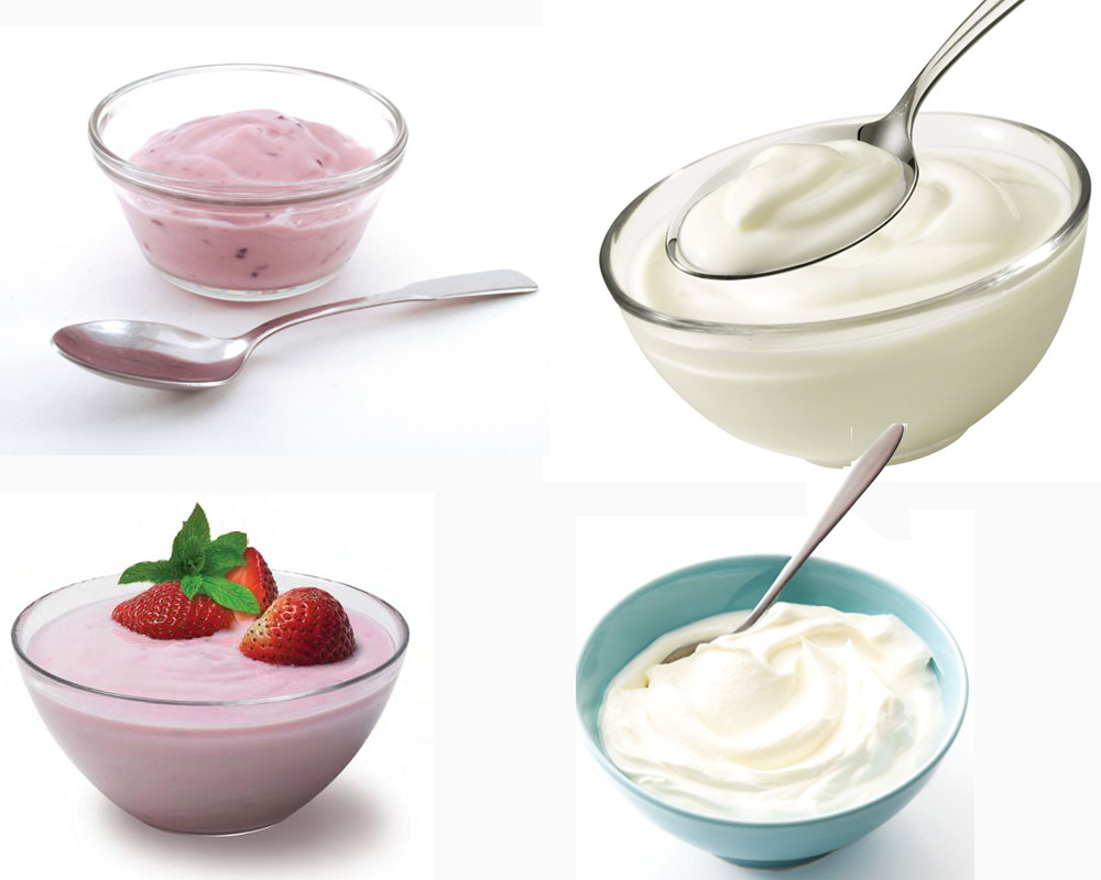 Parfait vs Yogurt b