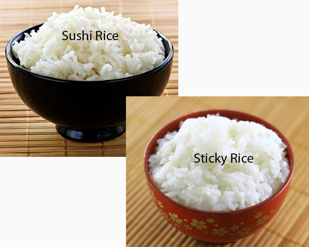 Sushi Rice vs Sticky Rice 1