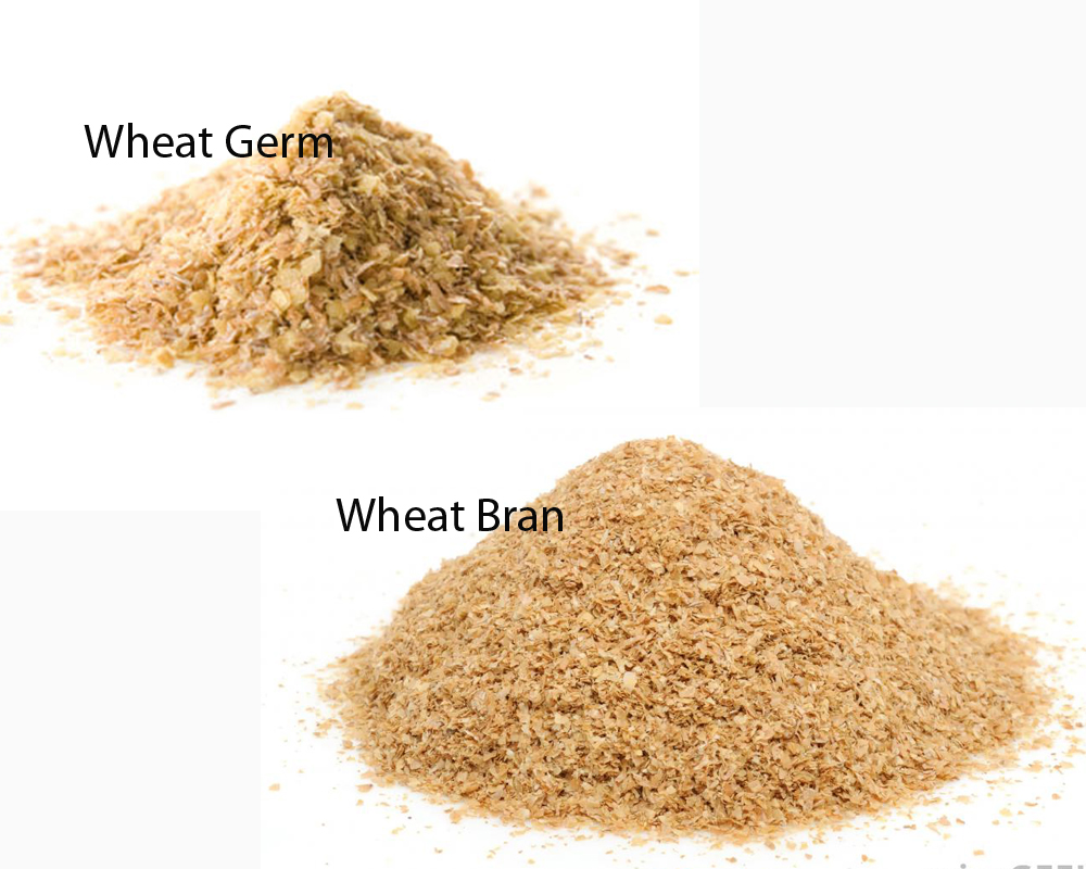 Wheat Germ vs Wheat Bran 1