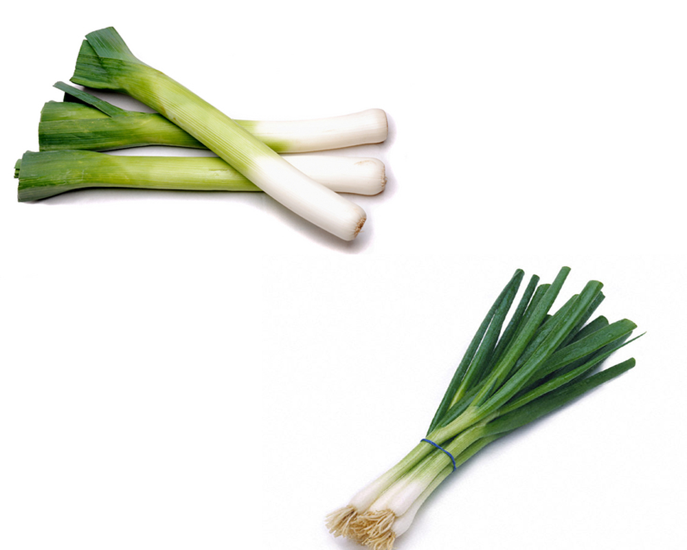 leeks-vs-scallions-1