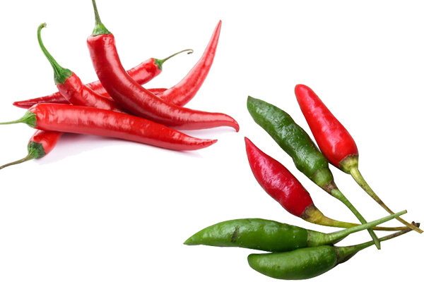 chili pepper vs cayenne pepper